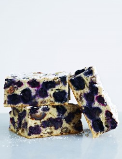 Georgia Blueberry Date and Nuts Bar