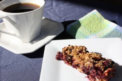 Georgia Blueberry Granola Bars